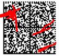 Data Matrix ECC200 error correction.